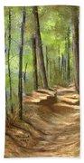 Adirondack Hiking Trails Beach Towel
