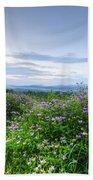 Adirondack View 6 Beach Towel