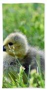 Adorable Goose Chick Beach Towel