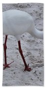 Adult White Ibis Beach Towel