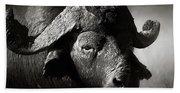African Buffalo Bull Close-up Beach Sheet