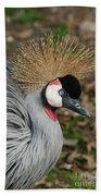 African Crowned Crane #8 Beach Towel