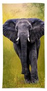 African Elephant Beach Towel