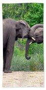 African Elephants Interacting Beach Towel