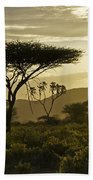 African Interlude Beach Towel