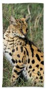 African Serval In Ngorongoro Conservation Area Beach Towel