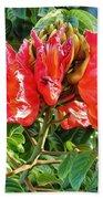 African Tulip Flower #2 Beach Towel
