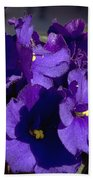 African Violets Beach Towel