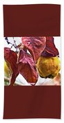After Rain - Fall In Mendocino Orchard Beach Towel