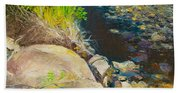 Afternoon Beside The Lane Cove River Beach Towel