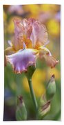 Afternoon Delight. The Beauty Of Irises Beach Towel