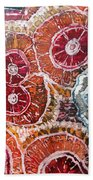 Agate Inspiration - 16a Beach Towel
