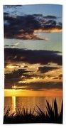 Agave Sunset Beach Towel