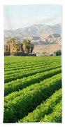 Agriculture In The Desert Beach Towel