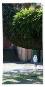 Aiken Rhett House Grounds Beach Towel