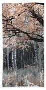 Airy Autumn In Woods Beach Towel