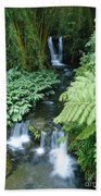 Akaka Falls Stream Beach Towel
