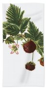 Akala Berries Beach Towel
