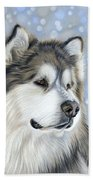 Alaskan Malamute Beach Sheet