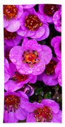 Alaskan Wild Flowers Beach Towel