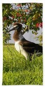 Albatross 1 Beach Towel