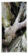 Alien In The Tree Beach Towel