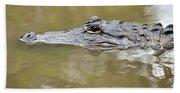 Alligator Stealth Beach Towel