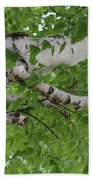 All About Trees Beach Towel