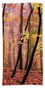 All Fall Beach Towel