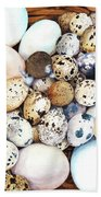 All My Eggs In One Basket Birds Egg Print Beach Towel by Peter Williams