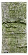 All-seeing Eye Of God On A Tree Bark Beach Towel