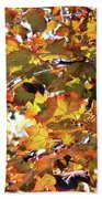 All The Leaves Are Red And Orange Fall Foliage With Sunshine Beach Towel