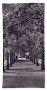 Allee Way Bw Beach Towel