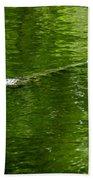 Alligator In Wait Beach Towel