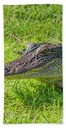 Alligator Up Close  Beach Sheet by Allen Sheffield