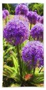 Allium Flowers Beach Sheet