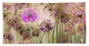 Allium Flowers Beach Towel