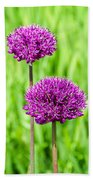 Alliums Beach Towel