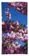 Almond Flowers Beach Towel