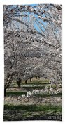Almond Orchard Beach Towel