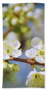 Almond Tree Branch Beach Towel