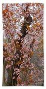Almond Tree Flowers 05 Beach Towel