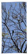 Almost Bare With Birds II Beach Towel