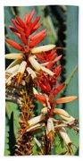 Aloe Bloom Desert Garden Beach Towel