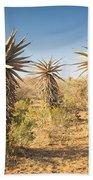 Aloe Vera Trees Botswana Beach Towel