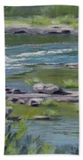 Along The River Beach Towel