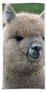Alpaca Smile Beach Towel