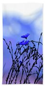 Montana Blue Bells Beach Towel