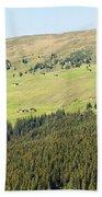 Alpine Forest Landscape.  Beach Towel