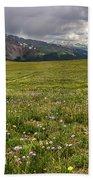 Alpine Meadow Before Mount Guyot Beach Towel